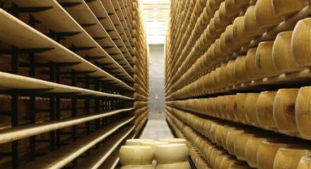 Parmesan Factory